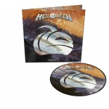 skyfall picture  vinyl