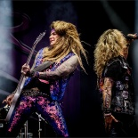 RDK_7304_Steel_Panther