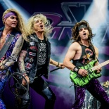 RDK_7336_Steel_Panther (1)