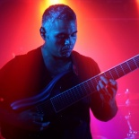 Animals as Leaders1